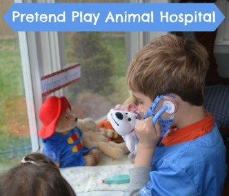 Set up your own pretend play animal hospitall. Fun way to encourage creativity, and sneak in some writing and math!