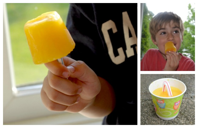 Easy Peasy (and healthy!)  Ice Pops
