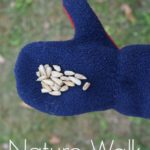 Family activity: Give thanks with birdseed on a nature walk