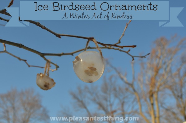 Ice Birdseed Ornaments: A Winter Act of Kindness