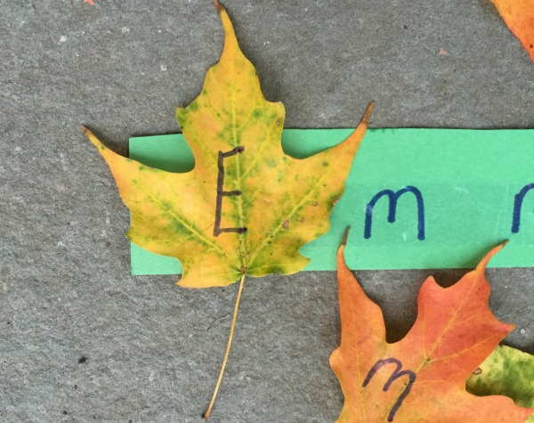 Leaf name game - perfect for fall!