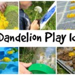 Dandelion Activities For Kids